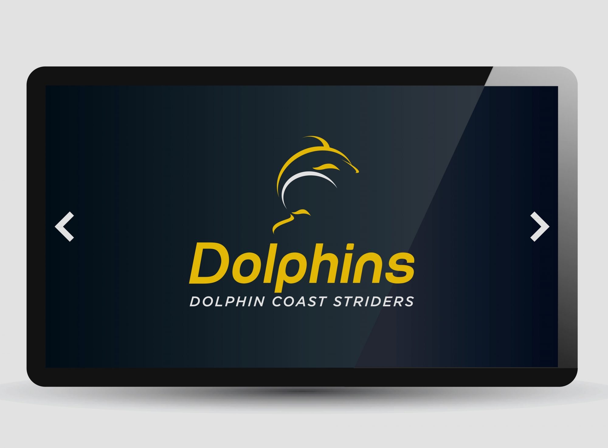 Dolphin Coast Striders Ipad